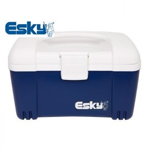Esky Cooler 6L Ice King Lunch Box