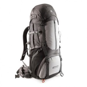 Companion E85 Backpack Grey 10608_img2_L